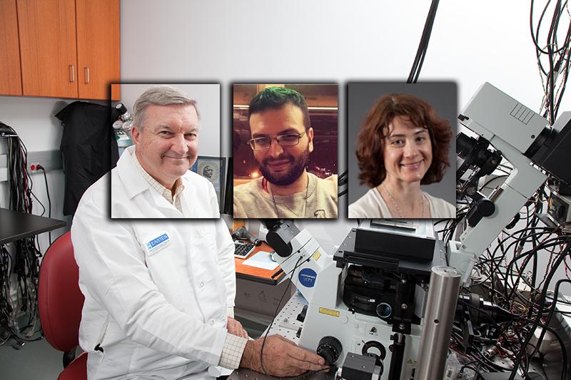 John S. Condeelis, George S. Karagiannis och Maja H. Oktay studerar kemoterapi - Foton: Einstein.yu.edu - Kollage: TV-helse.se