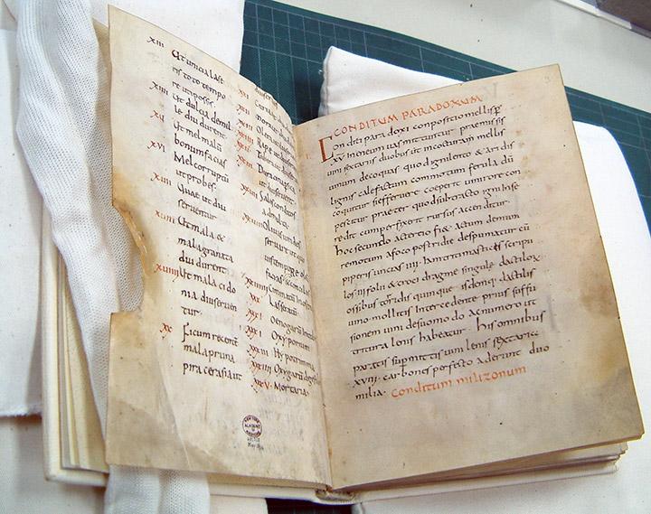 Apicius manuskript