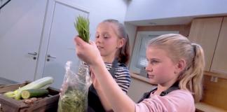 Börja dagen med en nyttig vetegräsdrink - Foto: TV Helse