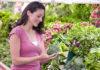 Cancerprevention bättre för att förebygga bröstcancer än mammografi - Foto: Crestock.com
