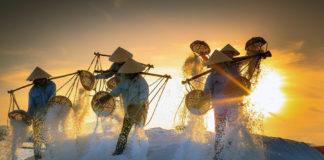 Salt kanske inte samma sak som havssalt. Foto: Quangpraha, licens CC0 1.0
