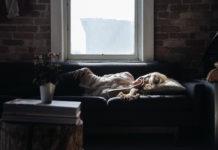 Sömn, sovande kvinna - Foto: FreePhotos. Licens: CC0, Pixabay.com