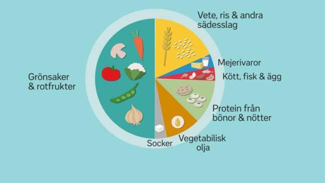 En ny kostcirkel från Eat Foundation ska rädda världen. Illustration: SVT