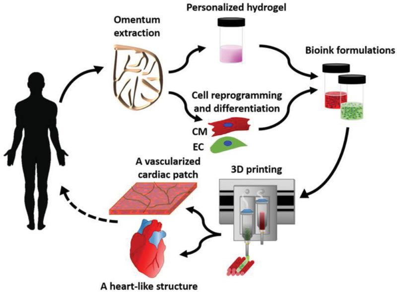 Skiss på hur ett 3D-hjärta skapas. Skiss: Nadav Noor m fl (för pressen)