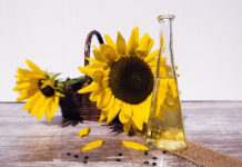 Solrosolja, sunflower oil. Foto: Bruno Glätsch