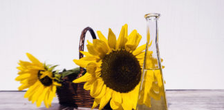 Solrosolja, sunflower oil. Foto: Bruno Glätsch