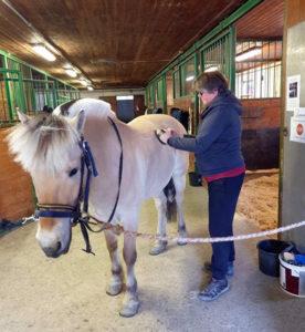 Wenke Nilssen hade B12-brist. Idag är hon nästan helt återställd. Privat foto.
