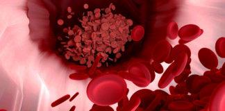 Blodceller. Foto: Narupon Promvichai. Licens: Pixabay.com