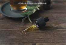 CBD skönhetsprodukter Foto: Crystalweed Licens: Unsplash